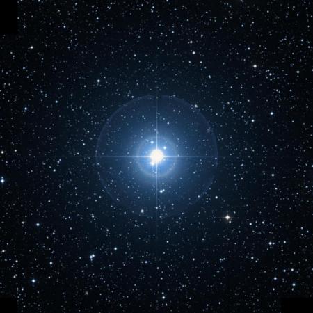 Image of Sheliak