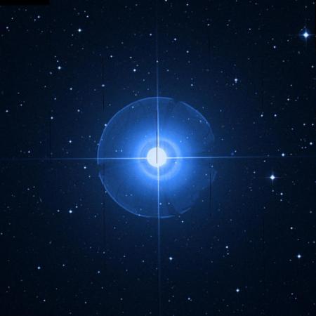 Image of Skat