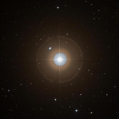 Image of α-Lyn