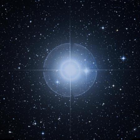 Image of Dabih