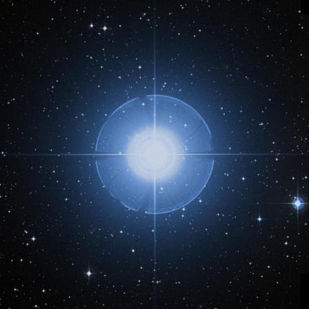 Image of Cursa