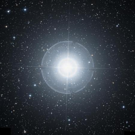 Image of Mirfak
