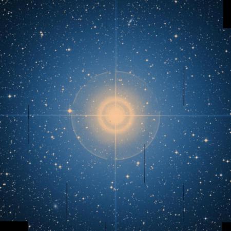 Image of Adhara