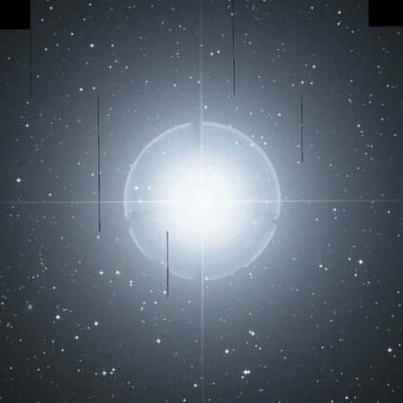 Image of Pollux