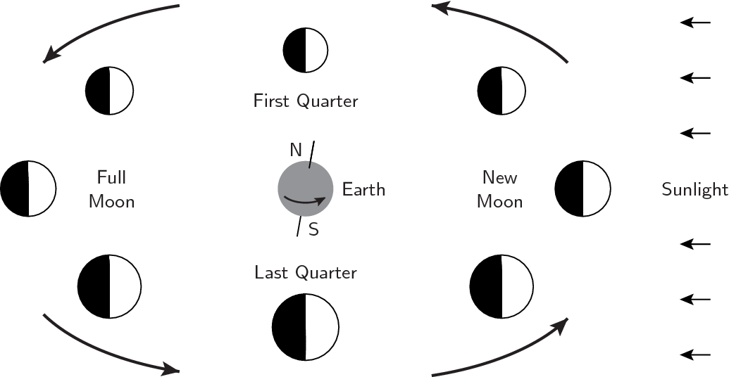 Phases Of The Moon In The Sky Org